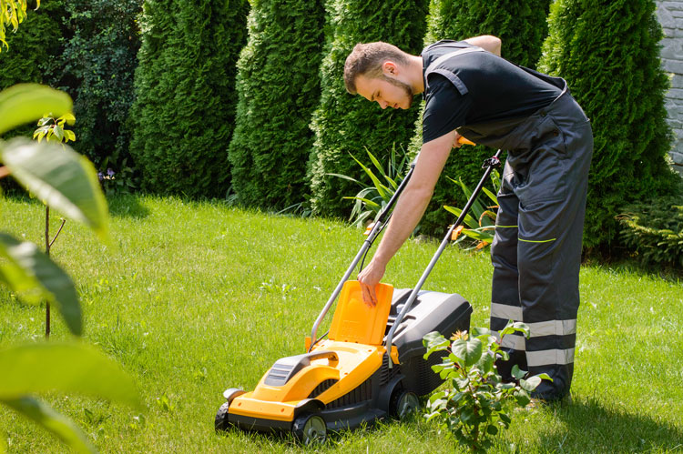 Workers Compensation Insurance for Landscapers (Code 0042) | Brookhurst Insurance
